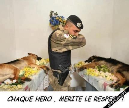HOMMAGE AUX HEROS!!!!! 230947_289920127794192_1578552114_n