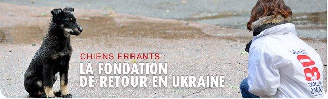 30 Millions d'Amis en Ukraine bandeau_ukraine3