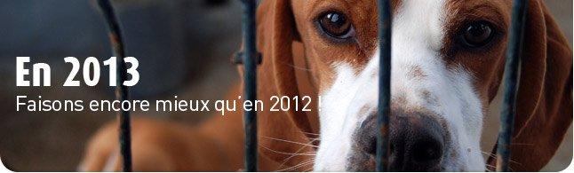 2012-2013 bando-2013