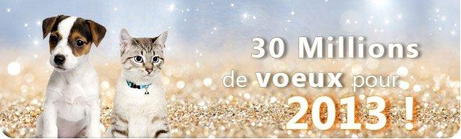BONNE ANNEE 2013 voeux-20121