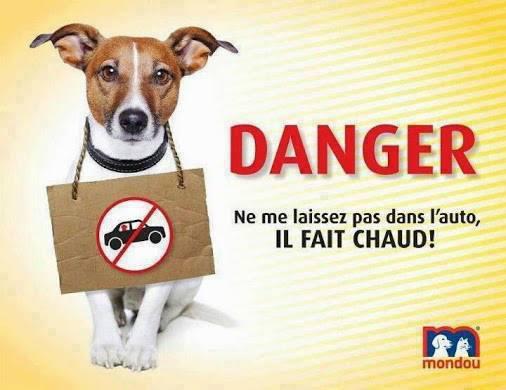 IL FAIT CHAUD!!!!!!!! 1069308_533990603317539_104315135_n